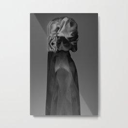 Chimaera Metal Print