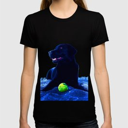 Ziggy Black Labrador T-shirt