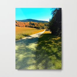 A long road into summertime Metal Print