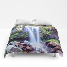 Curtis Falls Comforters