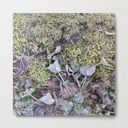 Frozen Foliage Metal Print