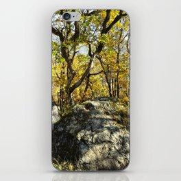 Tree Anchor iPhone Skin