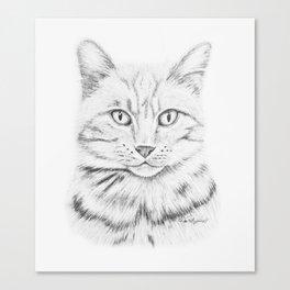 Tabby Tom Canvas Print