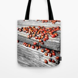 When the Ladybugs were Everywhere Tote Bag