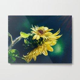 Sunflower At Sunrise Metal Print