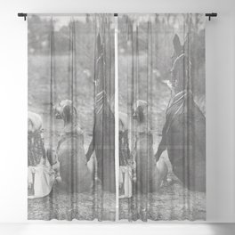 A Girl, Her Dog, and Her Horse wonderful black and white photograph - photography Sheer Curtain