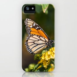 Peaceful butterfly iPhone Case