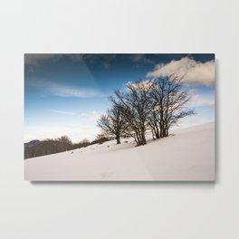 Tres Amigos , three trees in the snow Metal Print
