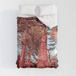 The Giants Comforters