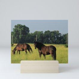 Horses in a green Pasture Mini Art Print