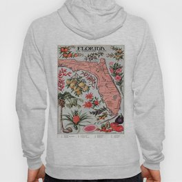 Vintage Map of Florida (1917) Hoody
