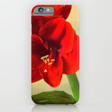 My Christmas flower iPhone 6s Slim Case