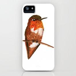 Allen's Hummingbird iPhone Case