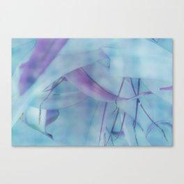 Soft unveiling Canvas Print