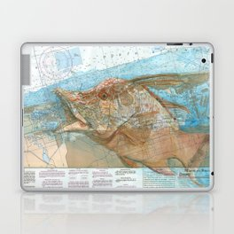 Hogfish Laptop & iPad Skin