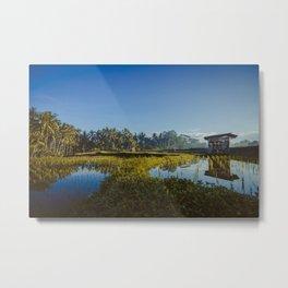Sunrise over rice fields in Ubud, Bali. Metal Print
