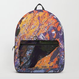 Colorful Moss on Rocks Backpack