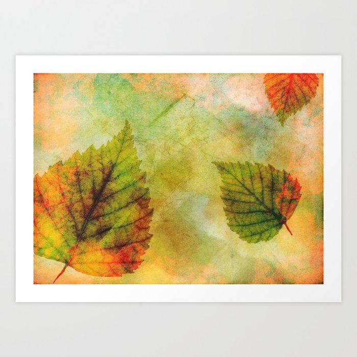 Colourful Leaves Art Print