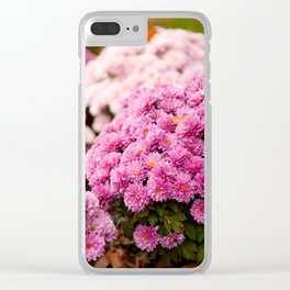 Many pink Dendranthema flowers Clear iPhone Case