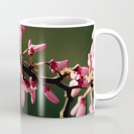 Cercis canadensis 'Forest Pansy' Coffee Mug