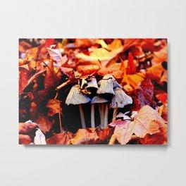 Autumn Mushroom Metal Print