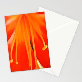 Firefall Stationery Cards