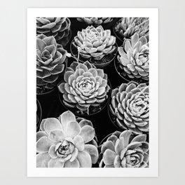 Plant Vibes Art Print