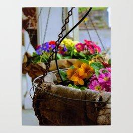 Baskets of spring Poster