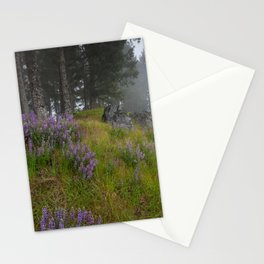 Bald Hill Lupines Stationery Cards