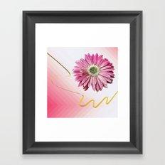 pink gerbera daisy with ribbon Framed Art Print