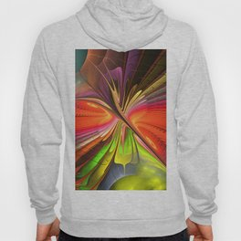 Freedom to fly Hoody