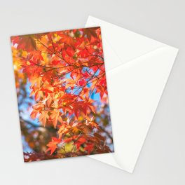 Autumn foliage in a maple tree at Kinkaku-ji Zen garden in Kyoto Stationery Cards