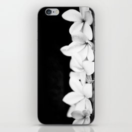 Singapore White Plumeria Flowers the Fragrance of Hawaii iPhone Skin
