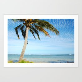 Palm tree in the wind.. Art Print