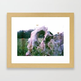 Eye Sight Framed Art Print