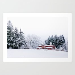 Winter Red Barn and Pine Trees in Minnesota Art Print