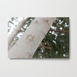 CAPERNAUM, ISRAEL - David's Tree Metal Print