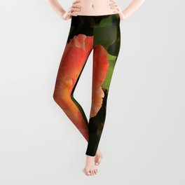 Ash Laden Leaves Leggings