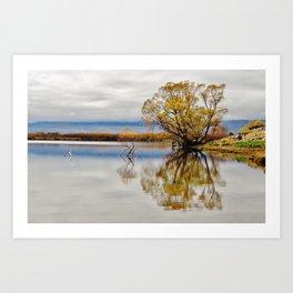 Lake McGregor Art Print
