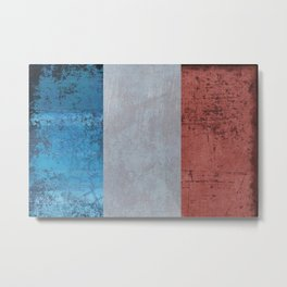 France Flag Metal Print