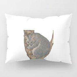 Cute Possum Pillow Sham