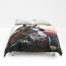 BUDWEISER Clydesdale Comforters