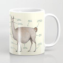 Anatomy of a Llama Coffee Mug
