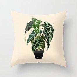 Caladium Alocasia Plant Throw Pillow