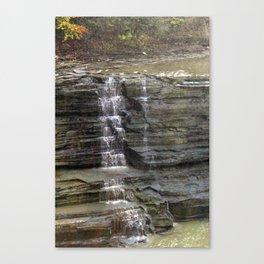 Trickling Falls Canvas Print