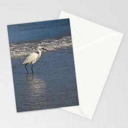 Strolling Casually Stationery Cards