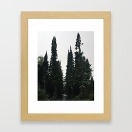 Isle Royale, Michigan Framed Art Print