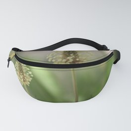 Plantain herb Fanny Pack