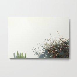 Minimal plants  Metal Print