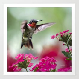 Ruby Garden Jewel Art Print